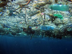 the pacific trash vortex. image u.s. national oceanic and atmospheric administration